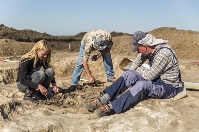ásatása csécse